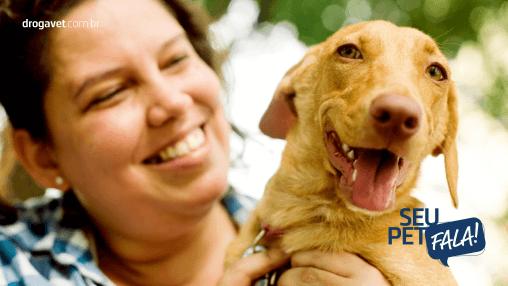 Sinais dos cachorros: Aprenda a entendê-los